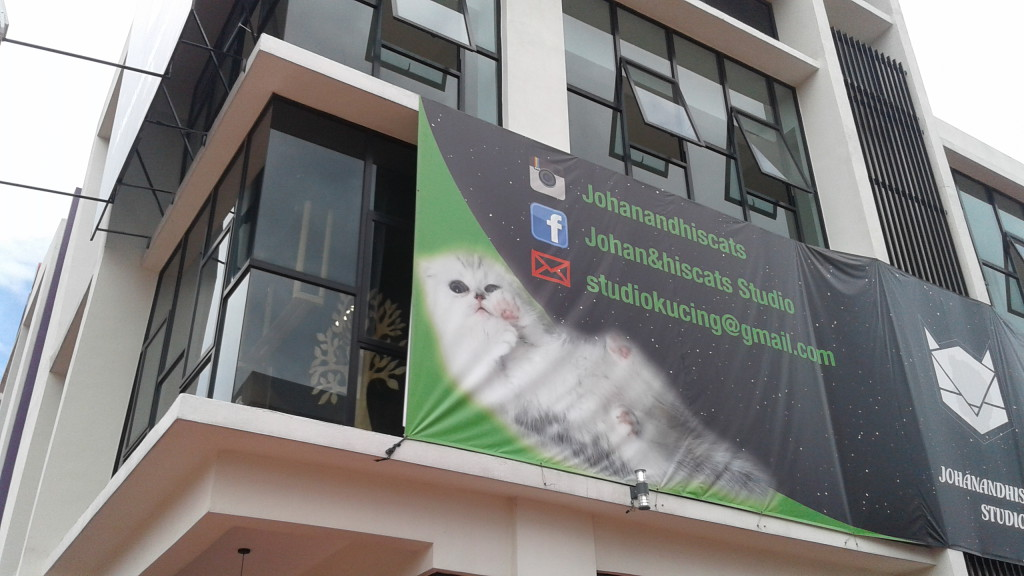 cat studio malaysia